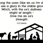 Lewis and the ox in Bethlehem