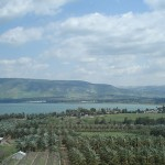 Galilee with palms