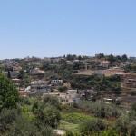 A view of Dalyat al-Karmel
