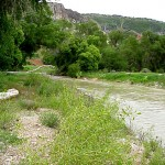 A warm day on the Spanish Fork River