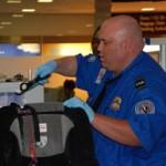 TSA on the job