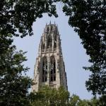 """The University Gone Feral"""