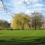Cambridge, UK, with green