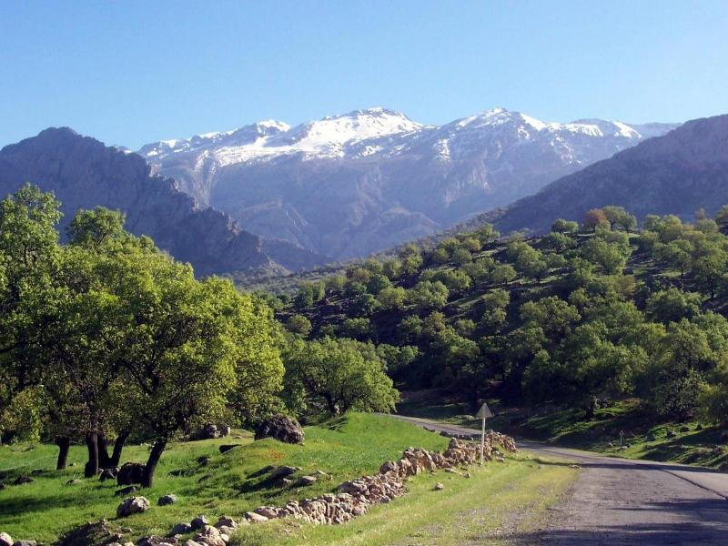 In the mountains of northern Iran