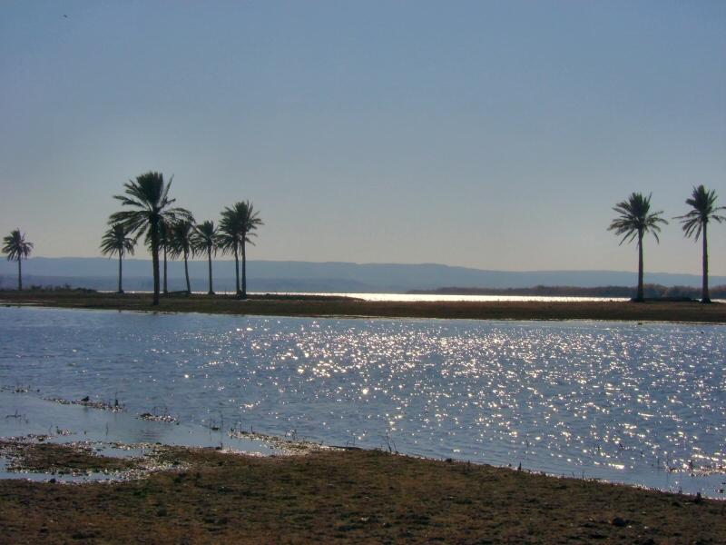 Along the Euphrates