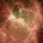 """""""Vatican stargazers look for divine inspiration"""""""