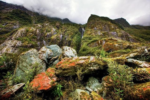 RomanticRainForest(NZ)