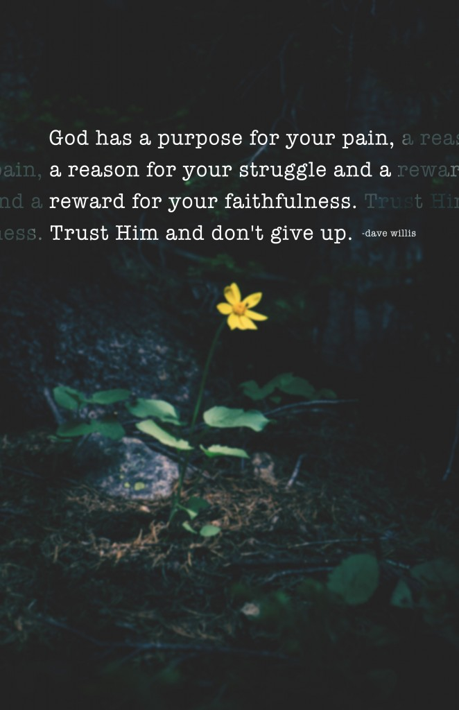 God has a purpose for your pain reason for struggle reward faith faithfulness trust Him don't give up quote inspirational Dave Willis davewillis.org