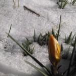 2014-03-02-14.33.15-1024x576