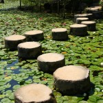 SteppingStones