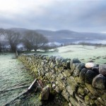 Photo Sunday: Stone Wall, Winter