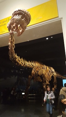 Titanosaur2Thumb
