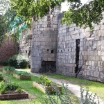 a community garden beside the ancient wall In York