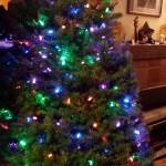 Yule Tree 2014