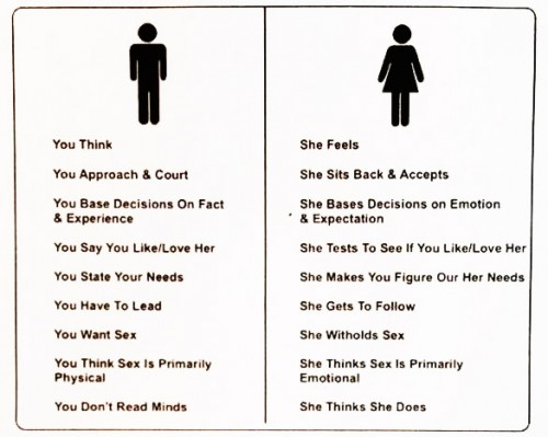 view male and female sex relations