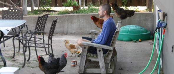 Praying with chickens