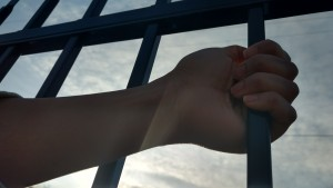 hand and bars - 2