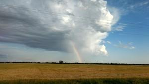2017 rainbow, storm, wheat