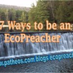 17 Ways to be an EcoPreacher and Help Heal Our Planet