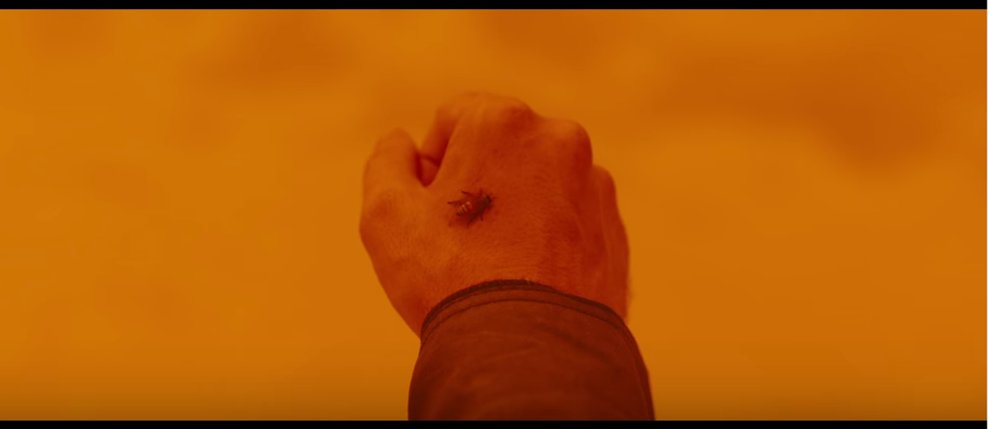Blade Runner 2049, bee on hand