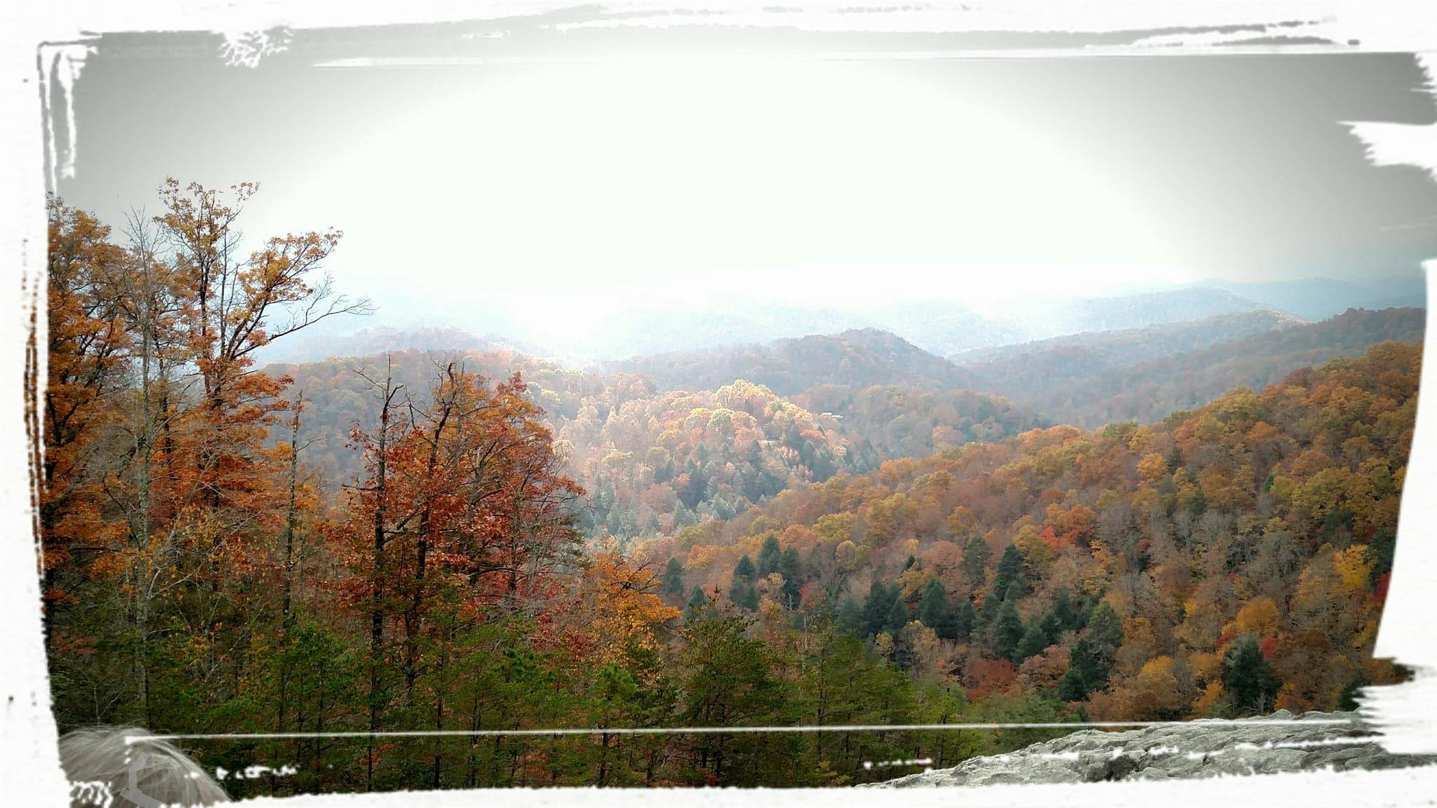 Sun breaking through clouds at Blanton Forest, Pine Mountain, Ky. Photo credit: Leah D. Schade. All rights reserved.