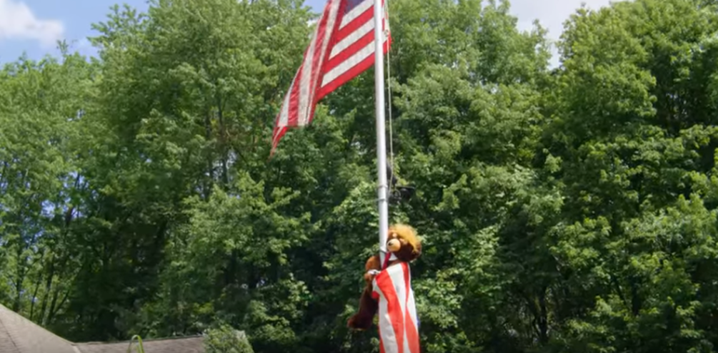 Trumpy Bear on flag pole