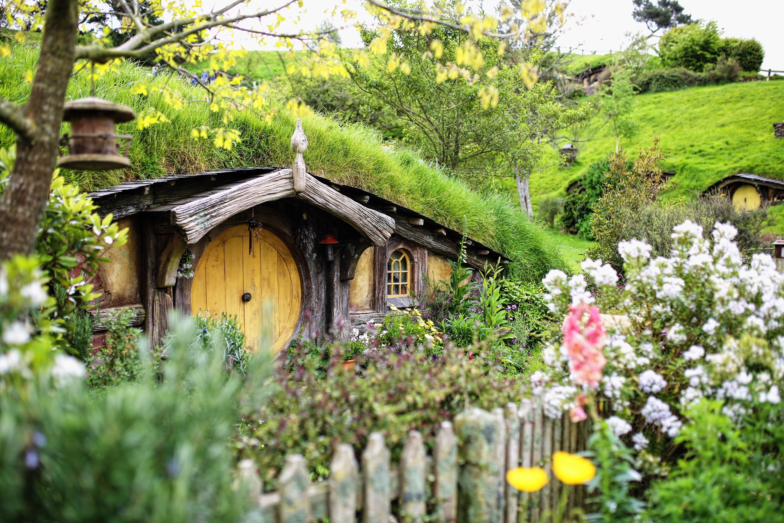 The free high-resolution photo of flower, hut, village, cottage, garden, tourism, new zealand, rural area, matamata, outdoor structure, ring shot, the hobby, the shire, taken with an unknown camera 02/23 2017 The image is released free of copyrights under Creative Commons CC0.