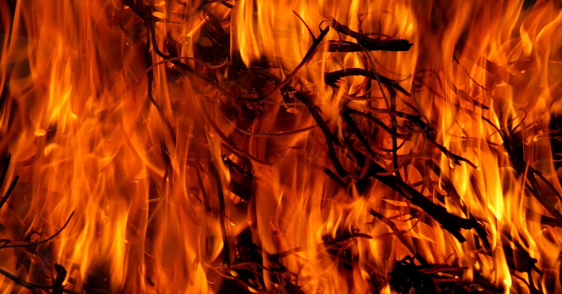 fire-717504_1920