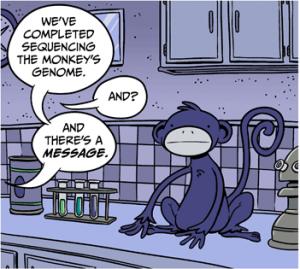 monkeyzones excerpt