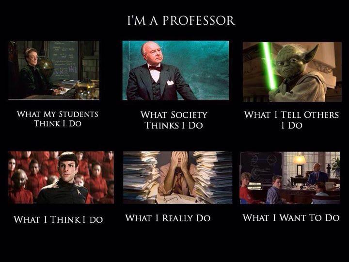 Professors - What I Really Do