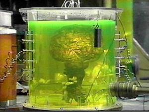 brain-of-morbius2