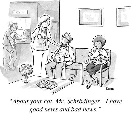 Schroedingers-Cat-good-news-and-bad-news - Schrödinger's Cat Revisited - Science and Research