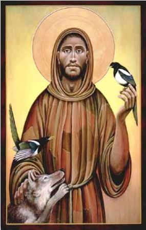 francis of assisi god s holy fool