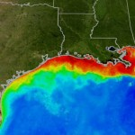 Satellite Photo of the Dead Zone from Mississippi River run-off
