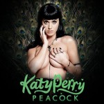 Katy Perry Dedicates a Song to Tim Tebow