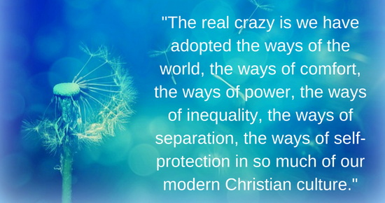 the real crazy is we have adopted the ways of the world, the ways of comfort, the ways of power, the ways of inequality, the ways of separation, the ways of self-protection in so much of our modern Christian culture.-2
