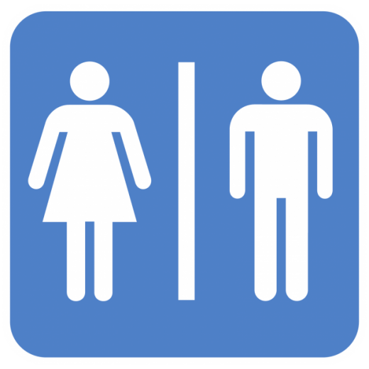 bathroom gender sign - Girl Bathroom Sign