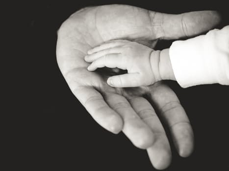 pexels-tiny hands holding dad