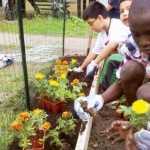 Why Gardening is Fertile Ground for Mission