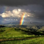 Genesis 9: The Forgotten Covenant