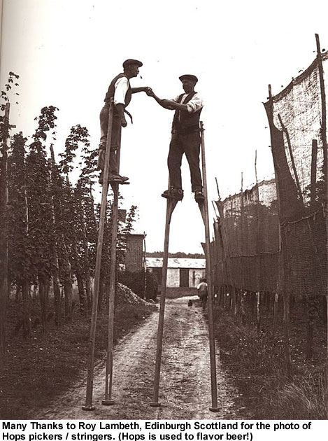 hops-pickers-on-stilts[1]