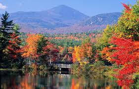 Autumn in NE