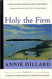 dillard family blog