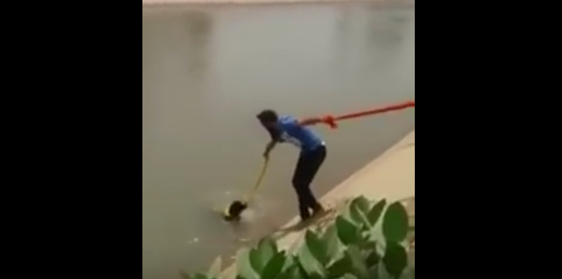 Sardar_Man_Saved_Dog_from_drowning_in_river_using_turban____Humality_Still_Alive_-_YouTube
