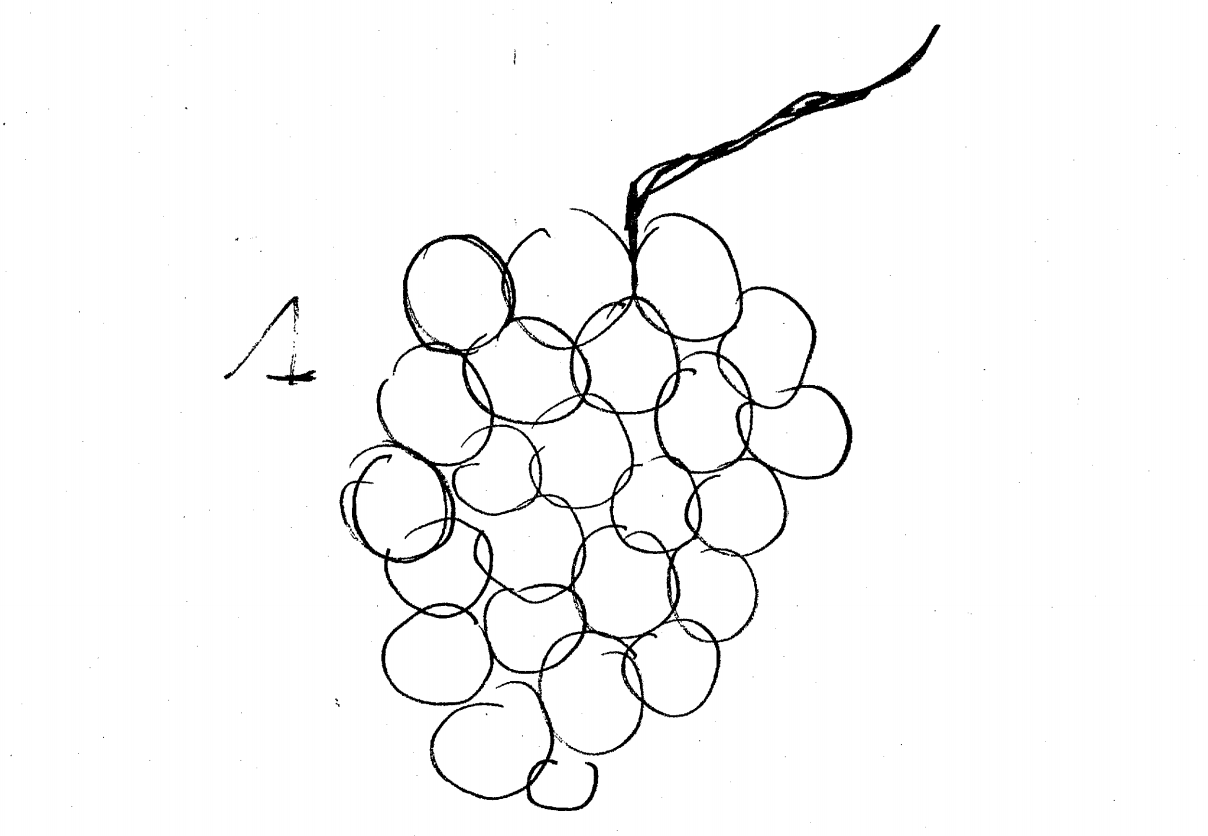 GrapesFuse