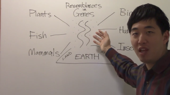 This Creationist Thinks He Just Disproved Major Evidence for Evolution