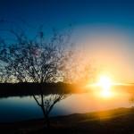 Liturgical Meditations: Eastertide