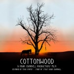 Announcing….COTTONWOOD Indiegogo Campaign!