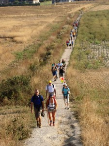 camino-santiago-1180770_1280