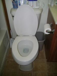 White_toilet